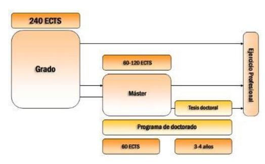 Portal Del Consejo General Del Trabajo Social Competencia
